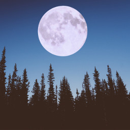 moon nighttime midnight freetoedit
