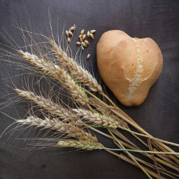 freetoedit myphotography bread heart wheat