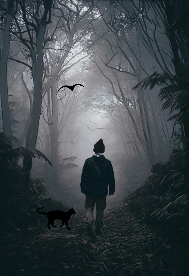 #freetoedit #edit #myedit #outdoors #nature #fig #foggy #walk #creepy #picturestory #hiking #adventure #mystery #mysterywalk #scary #blackandwalk #edition #dark #scary #cat