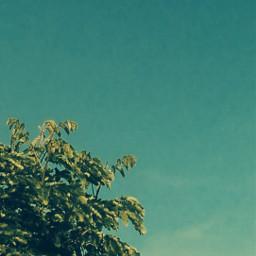 sky lovenature bluelove greenlove
