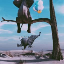 freetoedit elefant🐘 elefant