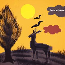dcjungles jungles shazahom1 artistic drawing