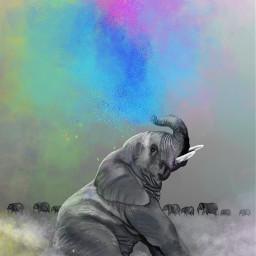 freetoedit dcjungles jungles art digitalart