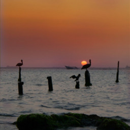 freetoedit picsart madewithpicsart sun beachsunset pcwaterislife