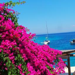 freetoedit myphoto pccolorfulsummer colorfulsummer island