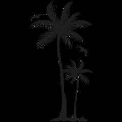 freetoedit tropical coqueiro ver palmeira