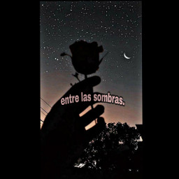 freetoedit frasestumblr libertad oscuridad frasesdeamor