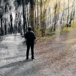 freetoedit nature paths darkside followthelight