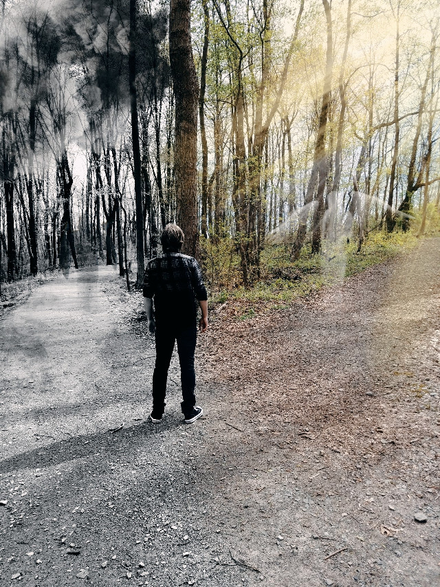 #freetoedit #nature #paths #darkside #followthelight #choices