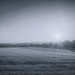 freetoedit sunshine field sunrays rays