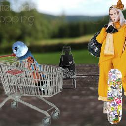 skateboards billieeilish shopping shoppingtime freetoedit