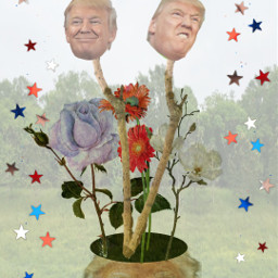 freetoedit trump flower patch