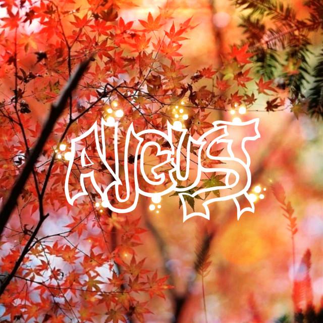 #freetoedit #august #autumn #autumniscoming #leaf #dryleafs #sparkles #shine #orange #sunshine #picsartedit  ××× @sofibonsi
