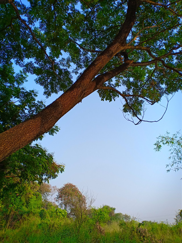 #freetoedit #myclick📷 #photography #nature #landscape @picsart @freetoedit
