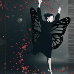 freetoedit myedit girl butterfly petals