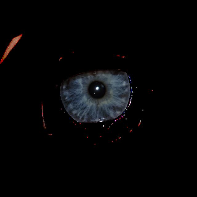 #глаз #зрачок #голубой #небесный #глаза
