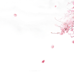 ftestickers background cherryblossoms petals clouds freetoedit