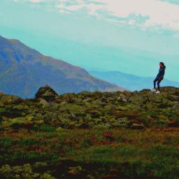 mountwashington hikingtrail hiker mountains mountainviews pcfaceless