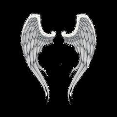 wings angel angels flying lucifer freetoedit