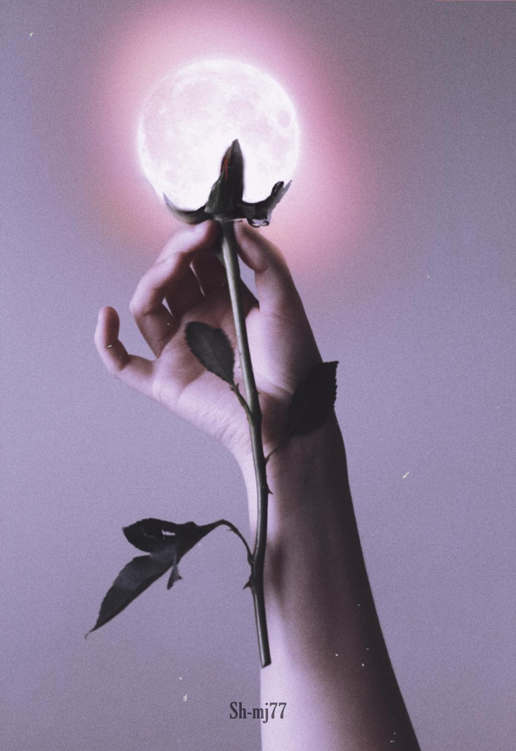 #freetoedit#flower#moon#hands