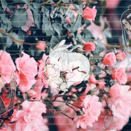 freetoedit modoazushi bunny love flowers