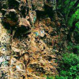 freetoedit photography woodland forest mountain