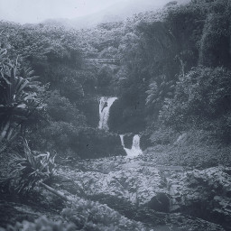 freetoedit waterfall jungle water splash