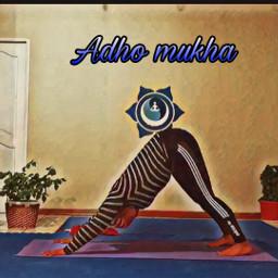 yoga yogalife