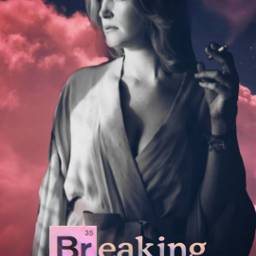 breakingbad skylerwhite annagunn smoke dream