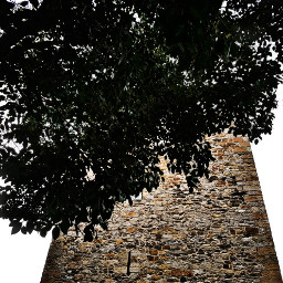 tree tower architecture photography stone freetoedit