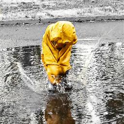 freetoedit myson puddlejumping puddle momentsoflife
