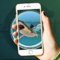 freetoedit ak mobilephotograpy shark fish ircsubmarine
