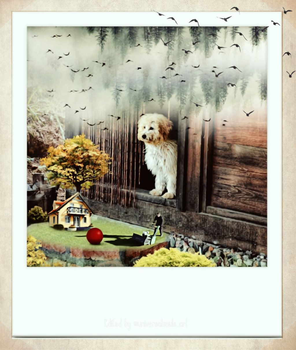 VOTING LINK https://picsart.com/i/304128605071201?challenge_id=5d5d22ebb8dc66229b711a87  #freetoedit #fxtools #polaroid  #retro #stickers #birds #papereffect #edit of my original edit #myimaginationatwork  #srcretroframe
