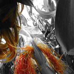 freetoedit camera myphoto colorsplasheffect cornfield