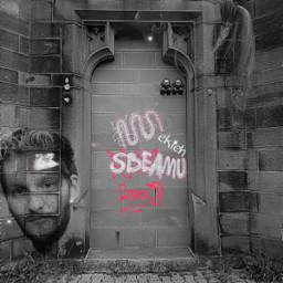 freetoedit camera myphoto mybackground graffiti