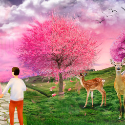 freetoedit landscape meadow cherryblossom wildlife