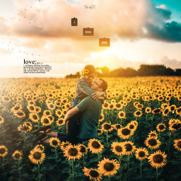 freetoedit sunflower couple love nature