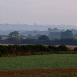 morningwalk countryside fields trees misty freetoedit