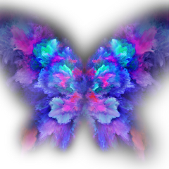 ftestickers butterfly colorfull freetoedit