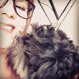 pets shihtzu furbaby dog kisses