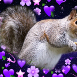 freetoedit squrrial galaxy hearts