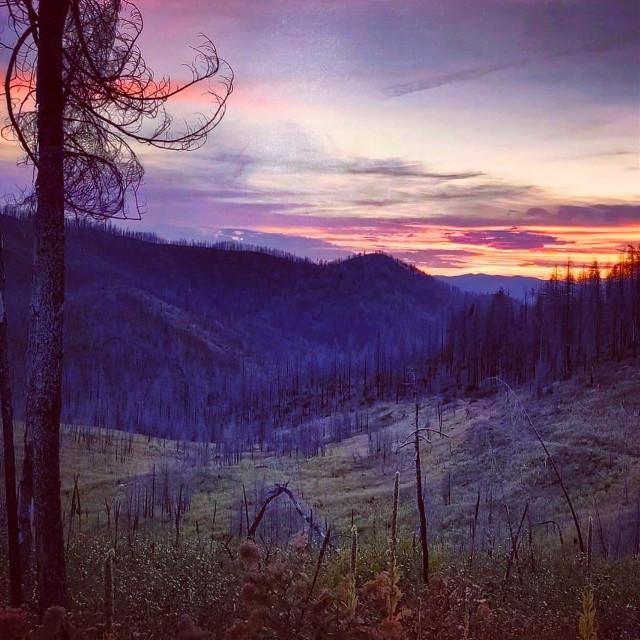 #freetoedit #sunrise #nature #trees #mountainview  #jonfuller