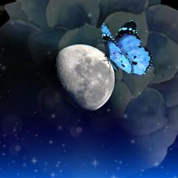 freetoedit butterfly moon giantanimals