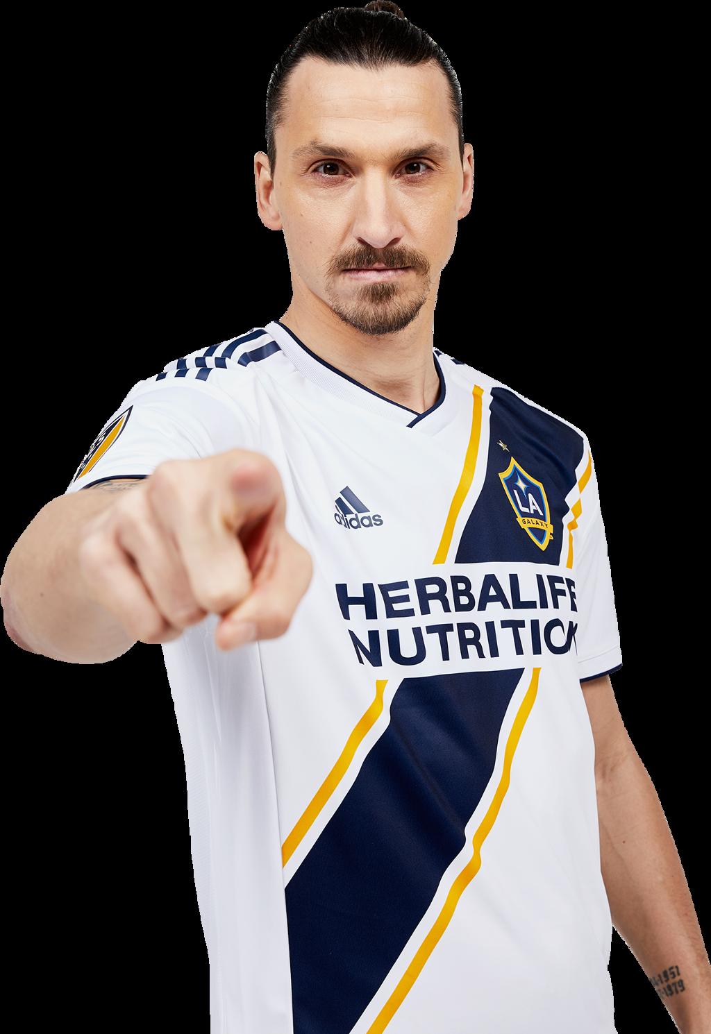 #lagalaxy #zlatanibrahomovic #soccer #thisisla