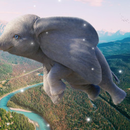freetoedit elephant dumbo nature picsart ecgiantanimals