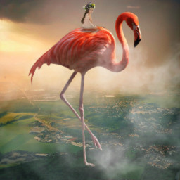 freetoedit flamingo surreal hill giantanimals