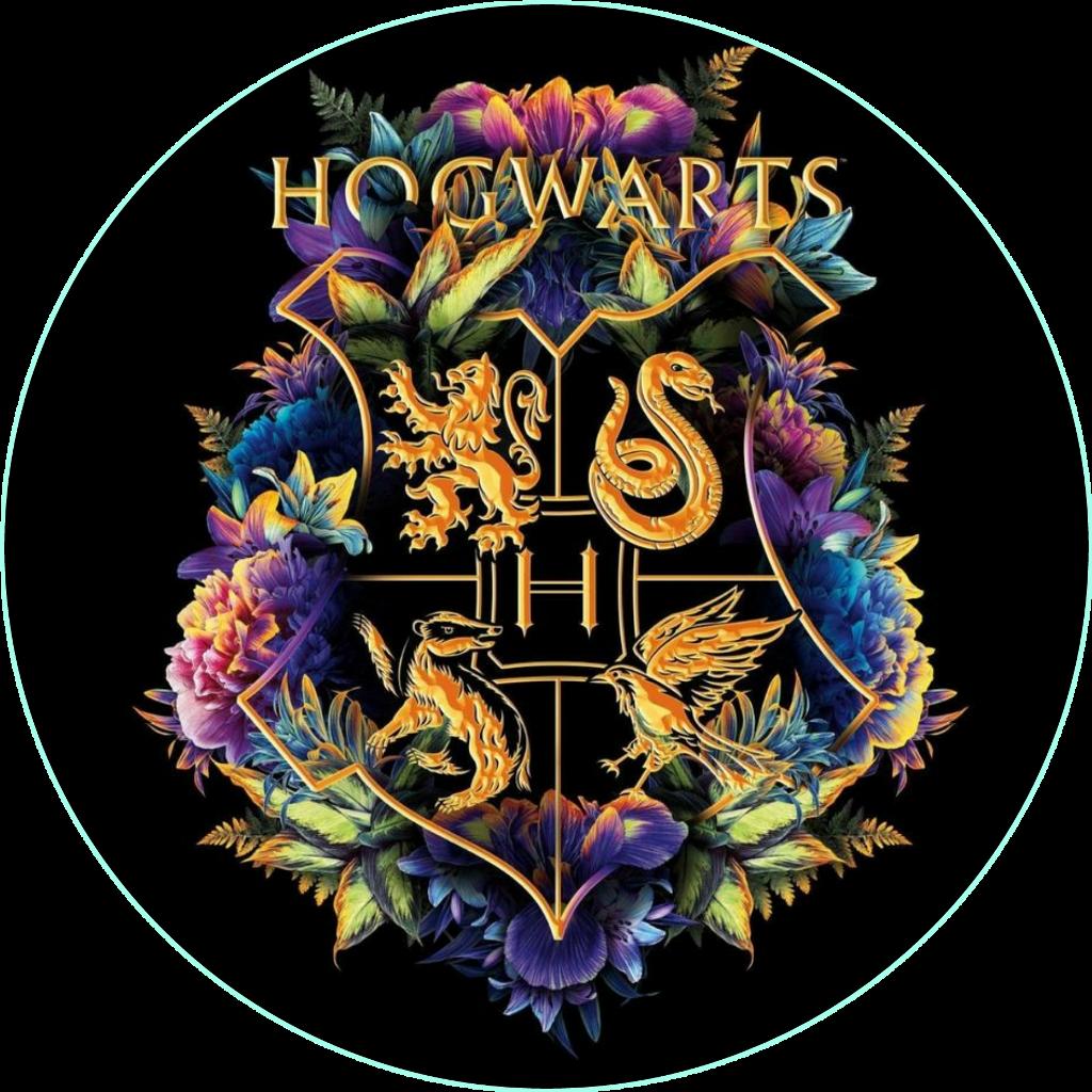 #harrypotter #hogwarts #griffindor #ravenclaw #slytherin #hufflepuff #hogwartshouses
