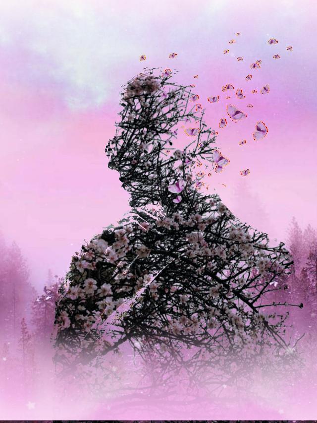 #freetoedit #silhouette #trees #pink #myedit