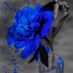 freetoedit blue surreal myedit colorsplasheffect