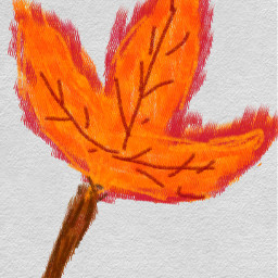 autum dcautumn autumn